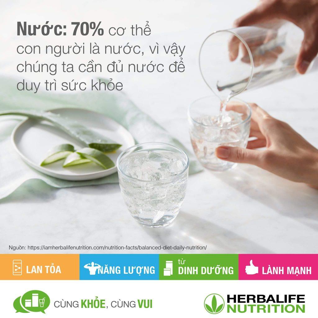 """Herbalife """" 7 yếu tố quan trọng tạo nên dinh dưỡng cân bằng"""""""